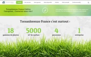 nouveau-site-torsanlorenzo